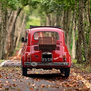 Travel-agency-in-Italy-250